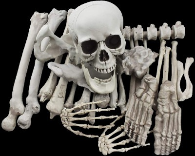 Bag of Bones Halloween Decorations