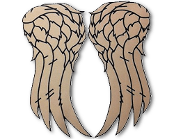 daryl dixon wings