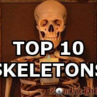 Top 10 Skeleton Decorations